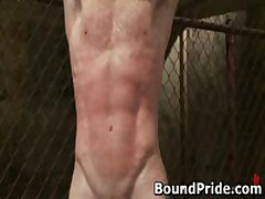 Super Hot Gay Guys In Extreme Gay Bondage 17 By BoundPride
