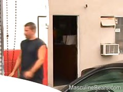 Bear Banging In The Back Of A Pickup