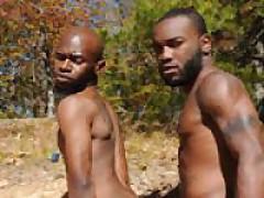 Tattoo Gay Movies