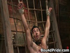 Drew Gianni Tight On Plank And Tortured 3 By BoundPride