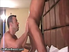 Rocco Martinez And Dominik Rider In Amazing Free Gay Sex Fucked And Sucked 8 By GetRawBreed