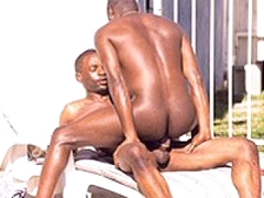 Black Gay Men Anal Fucking Under The Sun
